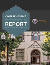 FY18 Comprehensive Annual Financial Report