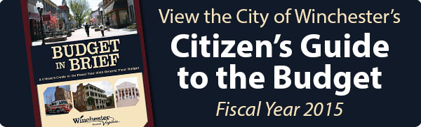 FY15 Citizens Guide to the Budget