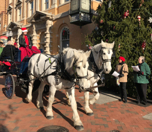 wagon ride in Old Town